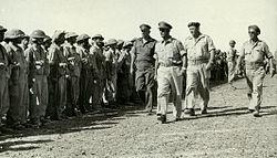 Simchoni Dayan Yafe IDF Lineup.jpg