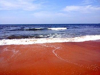 Sinquerim beach sea coming closer.jpg