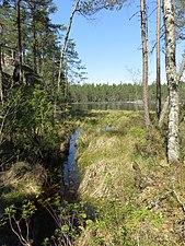 Sjö Tivedens nationalpark.jpg