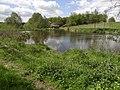 Skalsko (u Pohoří) - rybníček jihozápadně od vsi.JPG
