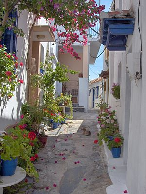 Skopelos - Traditional narrow streets of the island.