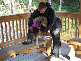 Sled Dog Discovery & Musher's Camp 30.jpg