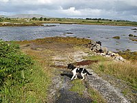 Slipway at the end of the road - geograph.org.uk - 1435551.jpg