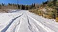 Snowplowing trace.jpg
