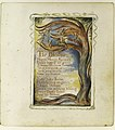 Songs of Innocence and of Experience- The Blossom- Merry Merry Sparrow MET DR395.jpg