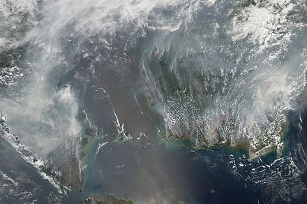 Fires on Borneo and Sumatra, 2006. People use slash-and-burn deforestation to clear land for agriculture. SouthEast Asia fires Oct 2006.jpg
