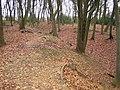 South Heath, Redding Wick Moat - geograph.org.uk - 110245.jpg