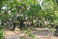 South Park Street Cemetery Kolkata (38270330936).jpg