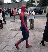 Spidermancostume243.jpg