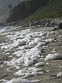Spume on beach 2.JPG
