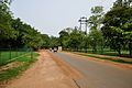 Sriniketan-Santiniketan Road - Bolpur 2014-06-29 5365.JPG