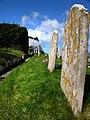 St Nicholas churchyard, Studland - geograph.org.uk - 732837.jpg