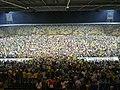 Stadio Benito Stirpe Frosinone Palermo 2-0 playoff final invasione di campo.jpg