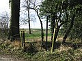 Start of the footpath from Pike Road - geograph.org.uk - 675121.jpg