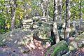 Steinernes Meer im Naturpark und Biosphärenreservat Pfälzerwald - panoramio (1).jpg