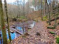 Stephen's Creek - panoramio.jpg