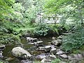 Stepping stones over Hebden Water, Wadsworth - geograph.org.uk - 1391144.jpg