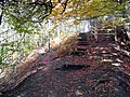 Steps up by the disused quarry at Moss Valley Country Park - geograph.org.uk - 1038960.jpg
