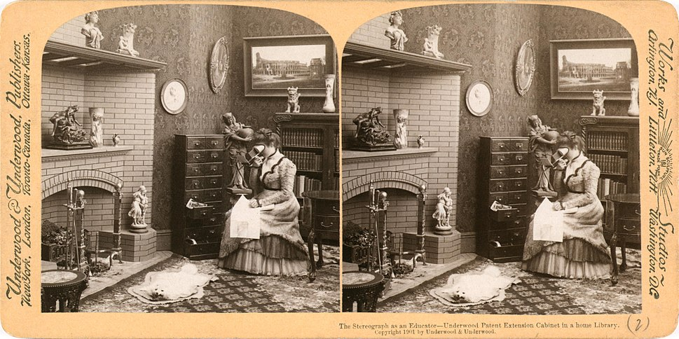 Stereograph as an educator