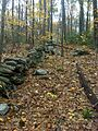 Stone wall on propety line, looking E - panoramio.jpg