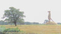 Straw meerkat near Nantwich - DSC09222.PNG