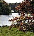 Studley Park Lake - geograph.org.uk - 1024973.jpg