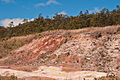 Sulfur Banks fumaroles3.jpg