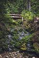 Summit Lake Trail 1177 — 004.jpg