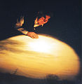Sunset on camera obscura.jpg