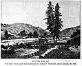 Sutter's Mill, 1851.jpg