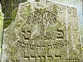 Třešť Jüdischer Friedhof - Detail Trauerweide 1.jpg