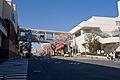 Tama-Plaza Station 04.jpg