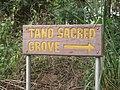 Tano Sacred Grove and Shrine in Ghana.jpg