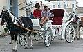 Taxi Specie Gr - panoramio (1).jpg