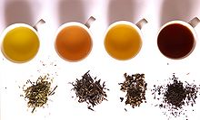 Four cups of tea with different shades of yellow to brown