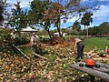 Team 2 clearing picnic area 9-23 (37243640232).jpg