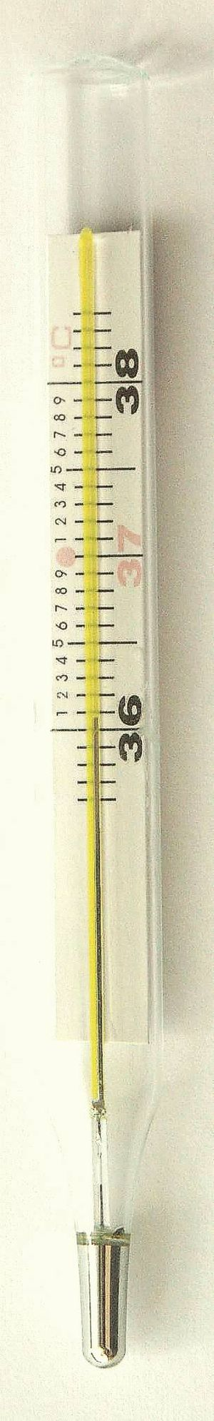 Ovulation type medical thermometer
