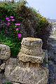 Tharros - Sardinia - Italy - 31.jpg