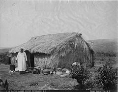 Thatched grass house in Honolulu, photograph by Frank Davey (PPWD-6-3.012).jpg