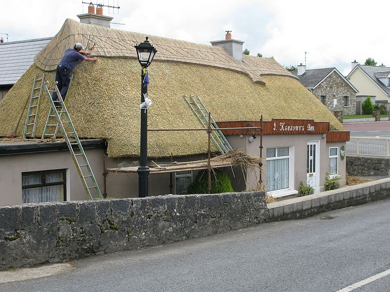 Thatching at Ballylooby 2010.JPG