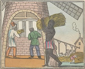 The Black Man's Lament or How To Make Sugar (page 17 crop).jpg