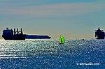 The Green Sail Boat (8472603635).jpg