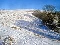 The Hergest Ridge - geograph.org.uk - 1724238.jpg