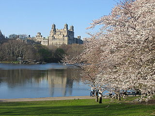 The Ramble and Lake Geographical features in New York Citys Central Park