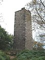 The Reform Tower - geograph.org.uk - 1711119.jpg