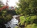 The River East Allen near Coatenhill - geograph.org.uk - 1000803.jpg