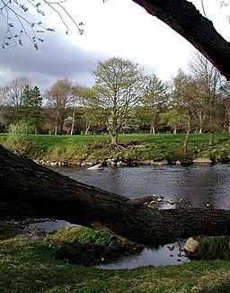 The River Wharfe, Riddings Lathe - geograph.org.uk - 425437