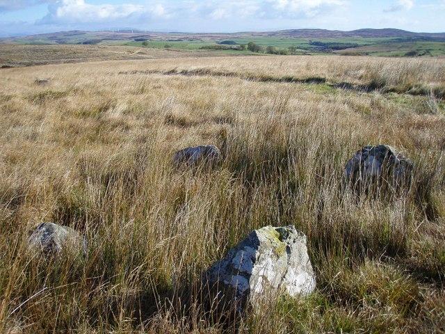The Standing Stones of Glenterrow - geograph.org.uk - 586547