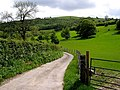 The Track to Penhenllan - geograph.org.uk - 439816.jpg