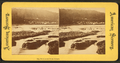The Willamette Falls, Oregon, from Robert N. Dennis collection of stereoscopic views.png